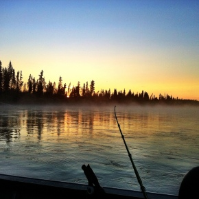 Kenai King Salmon fishery open